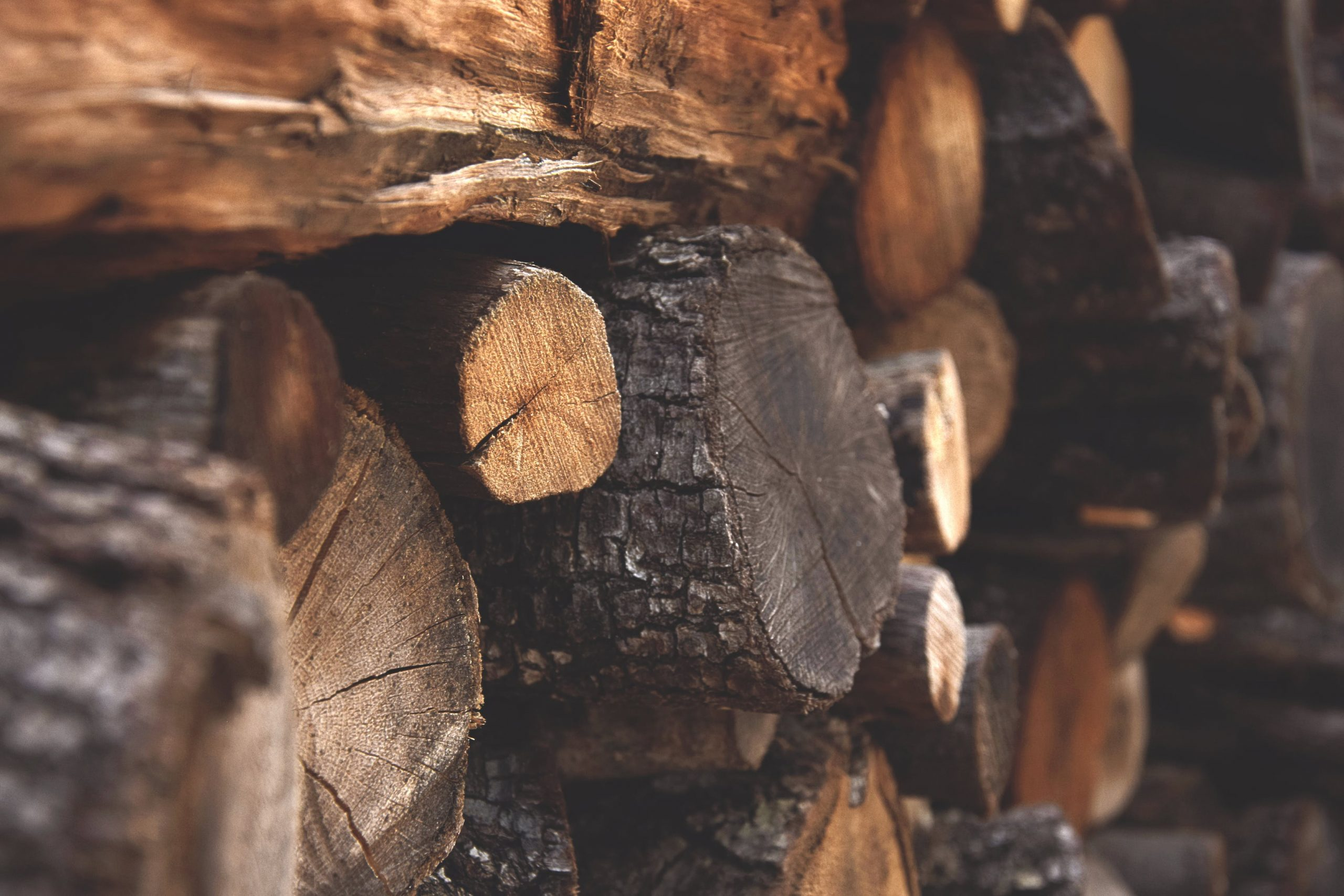 Essential Tips to Follow on Buying the Best Firewood
